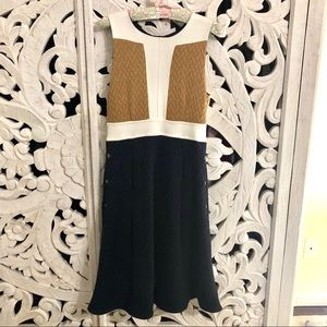 Anthropologie Navy Blue and Tan Pocket Dress